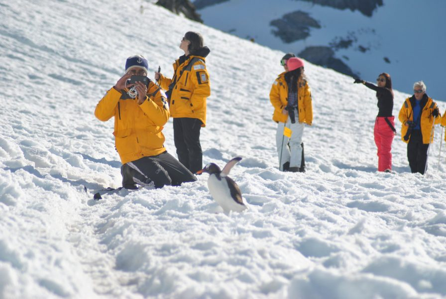 Antarctic cruise passengers exploring on land in the snow