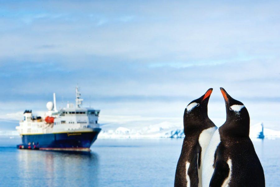 Gentoo penguins with an Antarctic ship in the background © Ralph-Lee-Hopkins